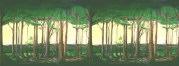 Double_Forest scrim rental
