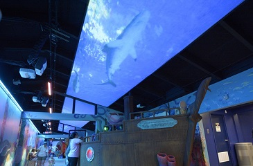 Projection Scrim used for ceiling rear projection surface