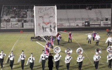 Marching Band Scrim from John Battle High School. Lion Witch Wardrobe Painted from Studio Productions.