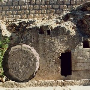 Tomb scrim rental